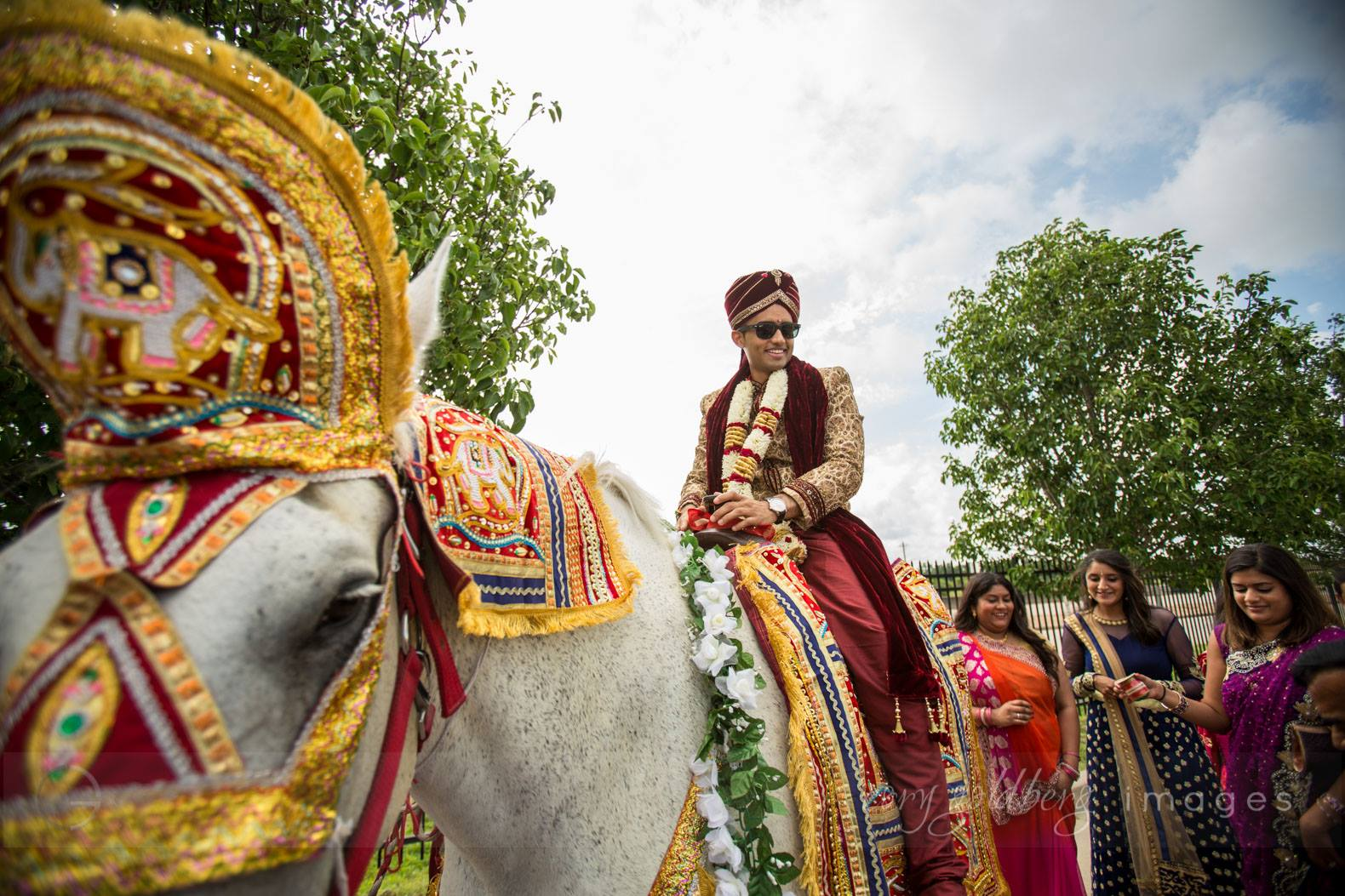 Manish & Kavitha Groom Horse1