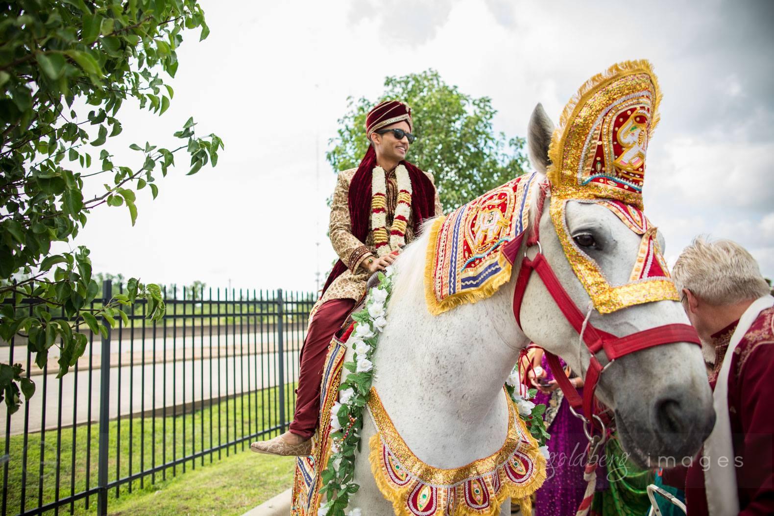 Manish & Kavitha Groom Horse2